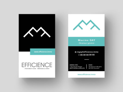 IDENTITE VISUELLE | EFFICIENCE