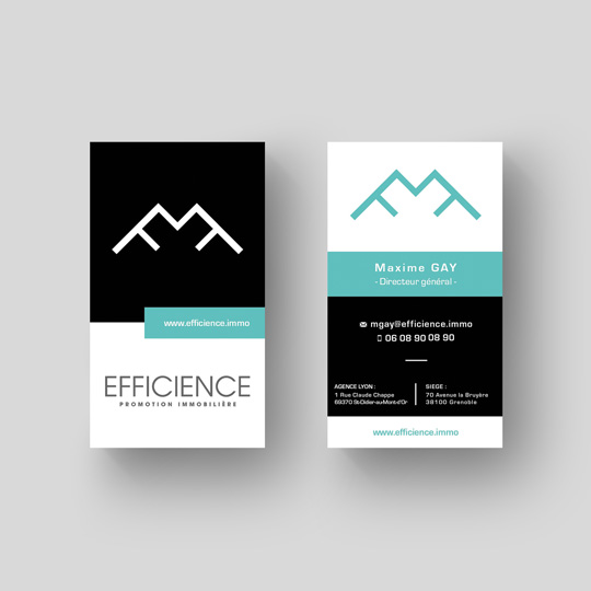 MOCKUP_CARTES_VISITE_EFFICIENCE