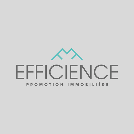 MOCKUP_LOGO_EFFICIENCE